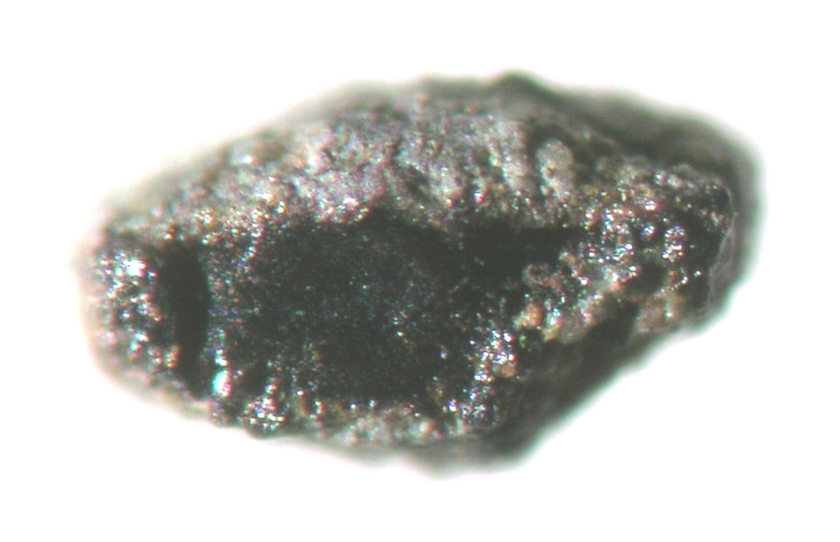 MSCc 135: Encased ilmenite.