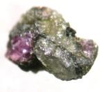 MSCc 154: Garnet peridotite.